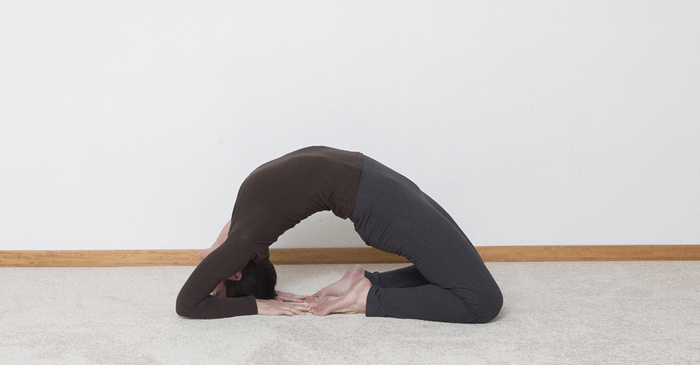die brücke yoga
